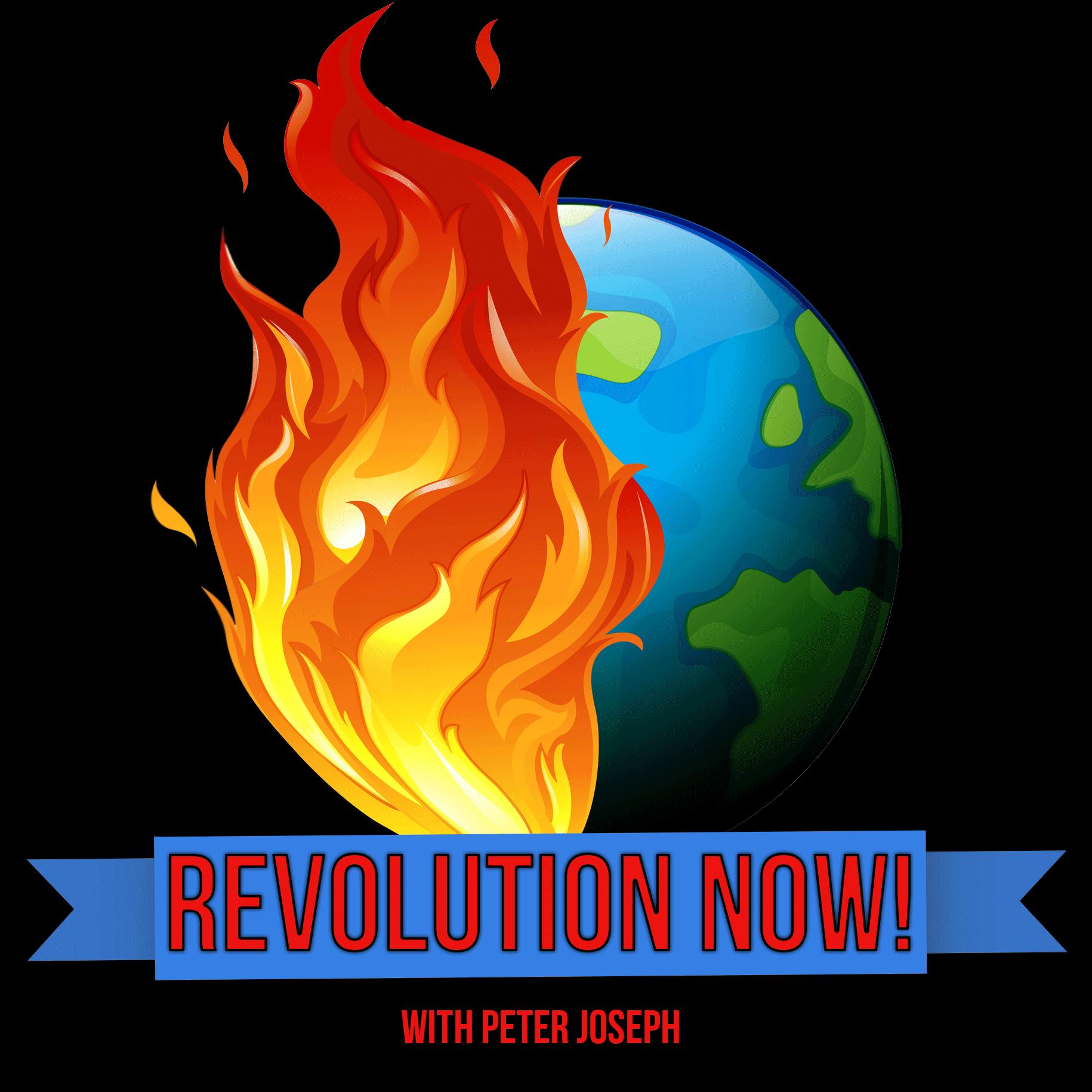 Revolution Now! with Peter Joseph | Ep #11 | Nov 25th 2020