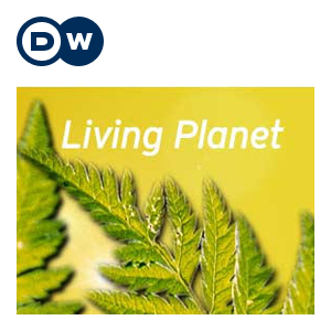 Living Planet: What's left behind